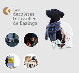 Bazinga, chroniqueuse Web qui a du chien !