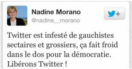 Défi pour Nadine Morano en 2014 : remonter le niveau de Twitter !