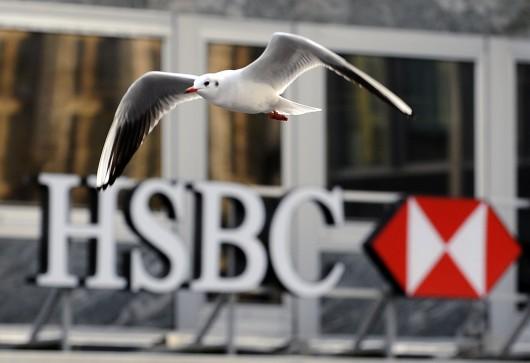 HSBC - mouette